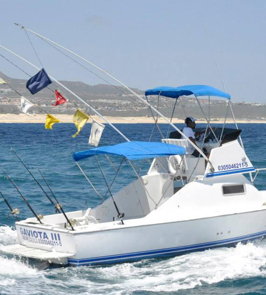 """Fishing 26"""" Boat"""
