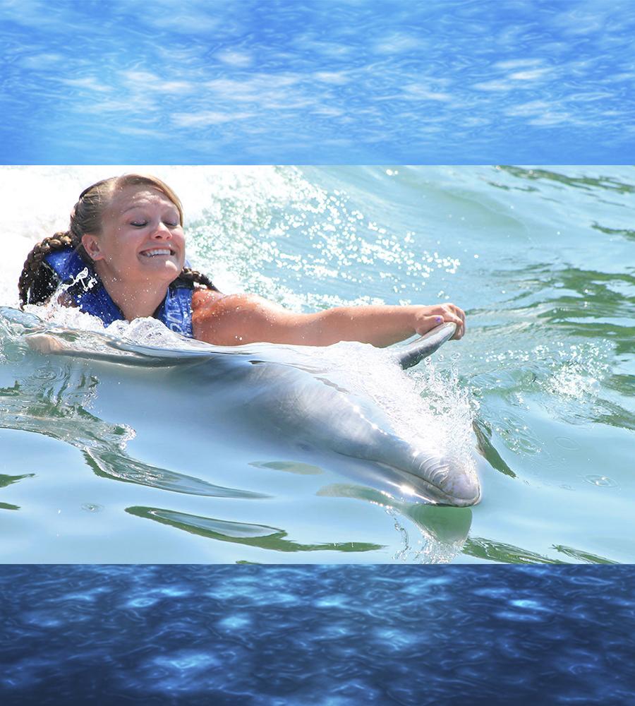 Swim & Ride