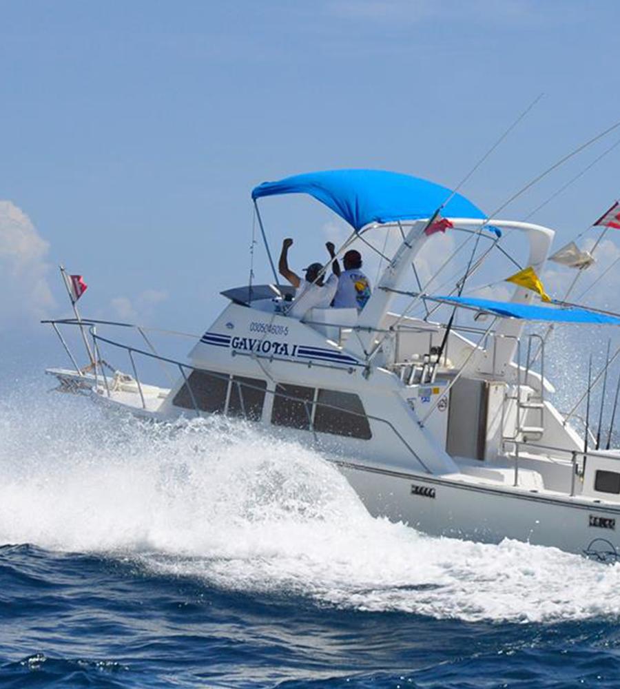 Barco de Pesca 33''
