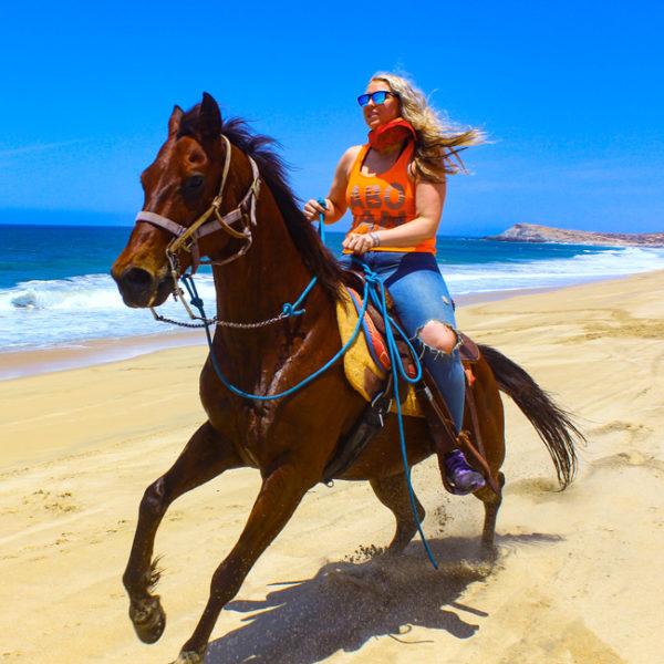 OffRoad-Horseback Combo