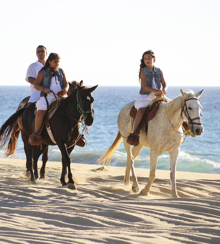 [en]Horseback Riding[/en][es]Cabalgata[/es]