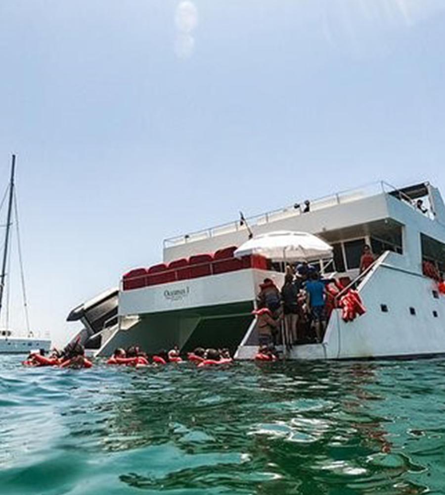 Snorkel & City tour